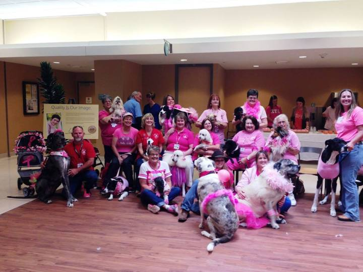 Day 1: Southeast Texas Paws 4 Love Therapy Animals
